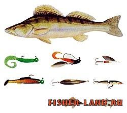 насадки для хищной рыбы на реке Тамбовском