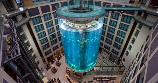 Самые невероятные аквариумы в мире