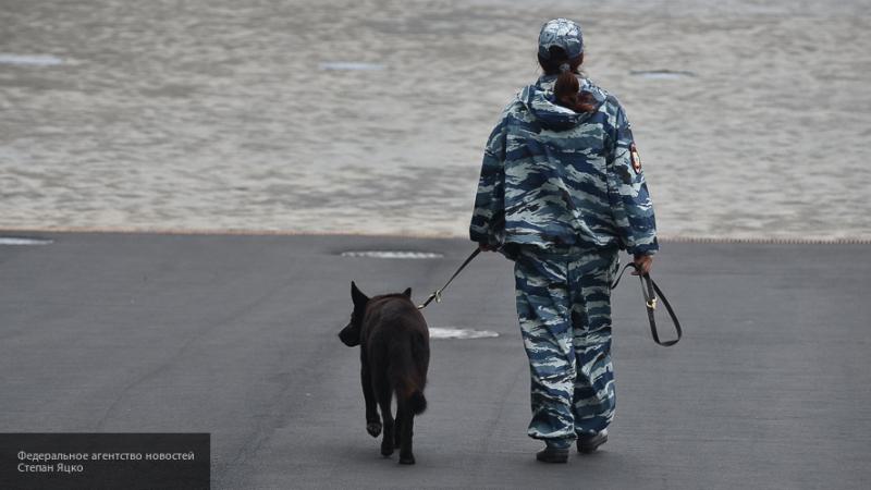 Новую редакцию закона о частной охранной деятельности подготовили в Госдуме