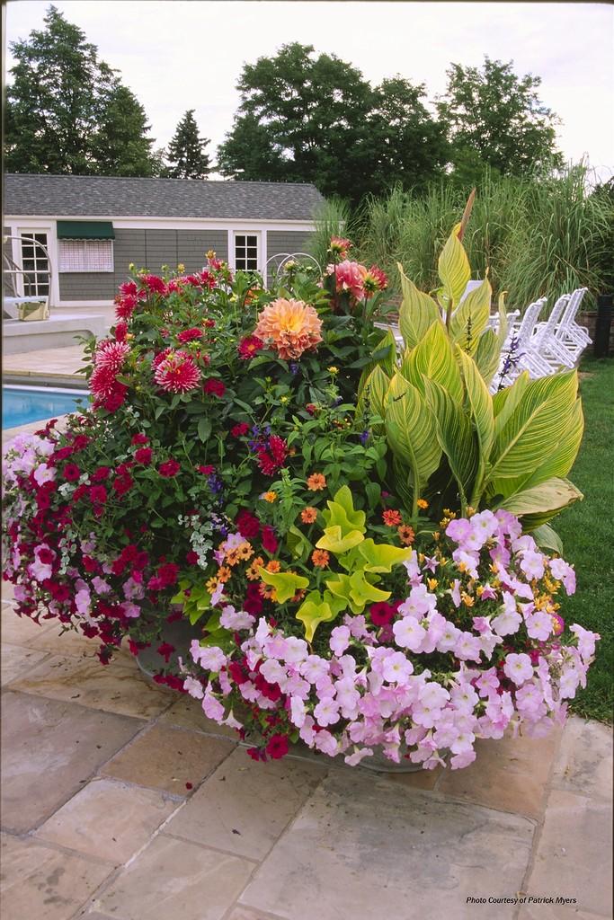 Цветочные контейнерные сады
