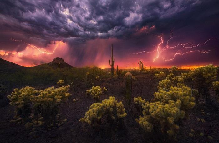 Красота стихии: 30 ярких фотографий грозового неба
