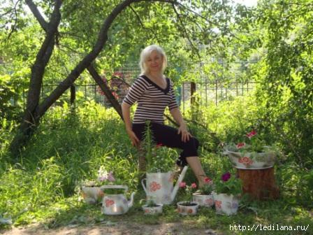 Идеи создания цветников от Любаши