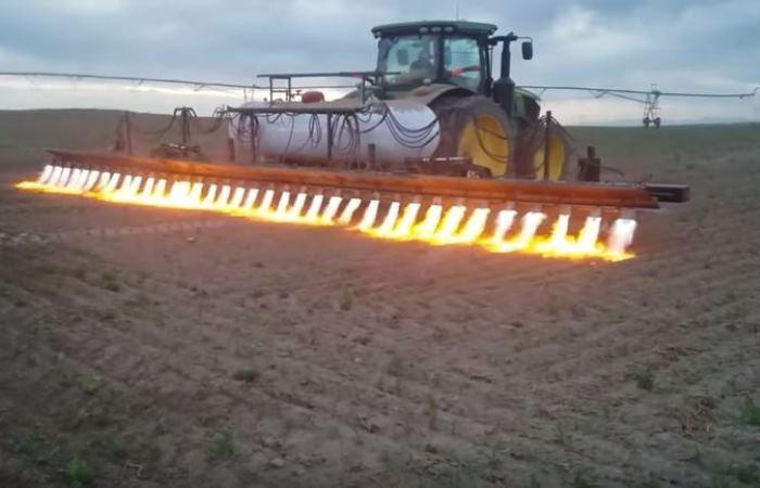 Вальхалла-трактор: самый эксцентричный способ борьбы с сорняками