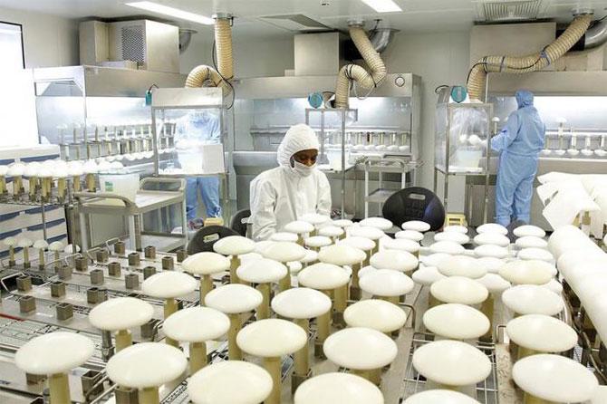 Производство силиконовых имплантантов