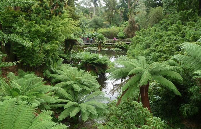 """Парк """"Затерянные сады Хелигана"""" — зеленая сказка старой Англии"""