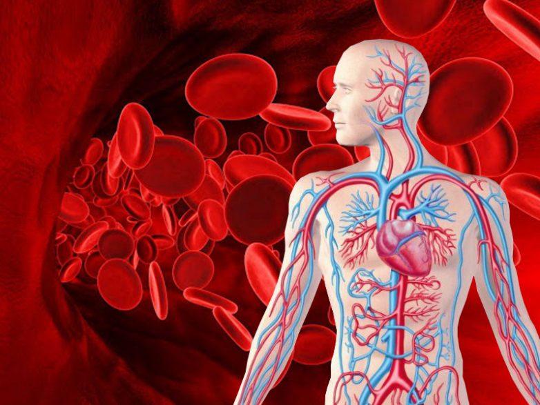 Симптомы и неочевидные низкого гемоглобина