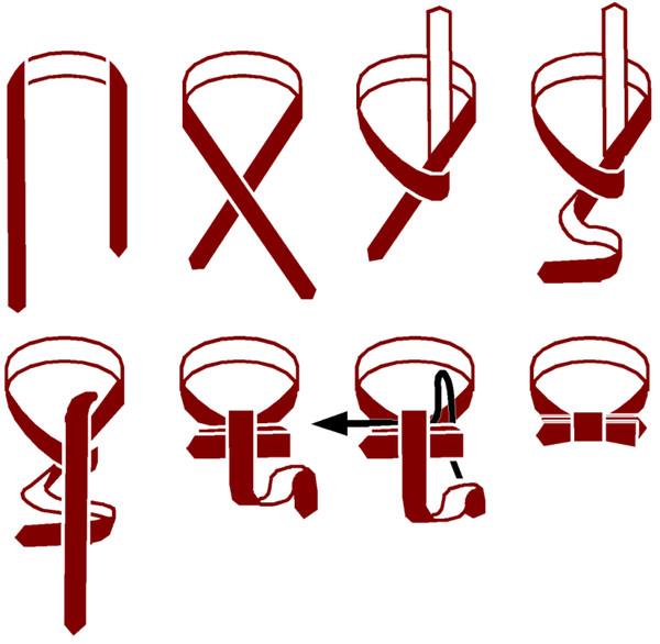 Как правильно завязать галстук