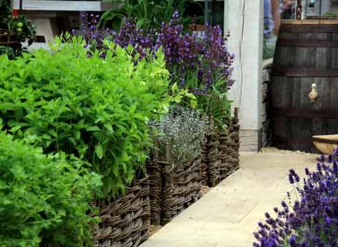Огородная эстетика: строим композицию