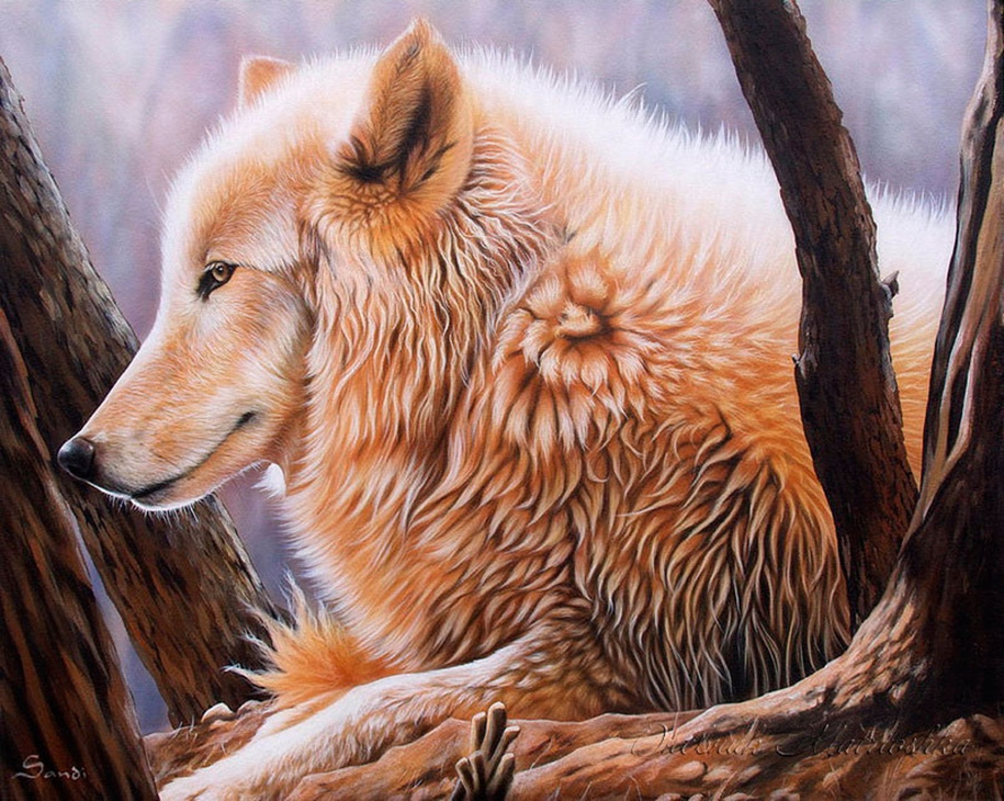 Awesome realistic drawings of animals 22