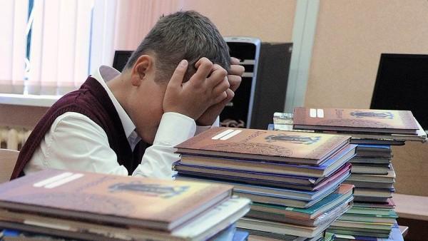 Украинские школьники изучают…