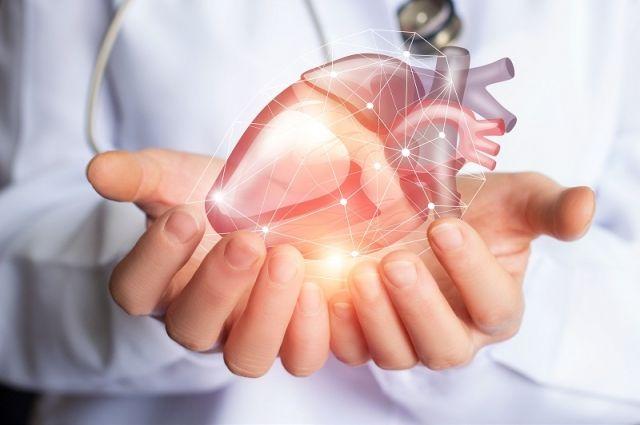 Сюрпризы кардиологии. Жир сосудам не вредит, а кислоты омега-3 — бесполезны