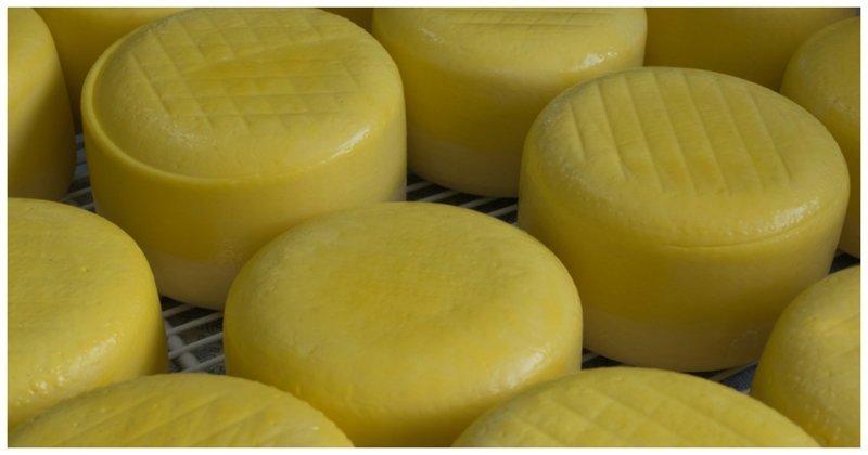 """В России могут запретить """"ненастоящий сыр"""""""