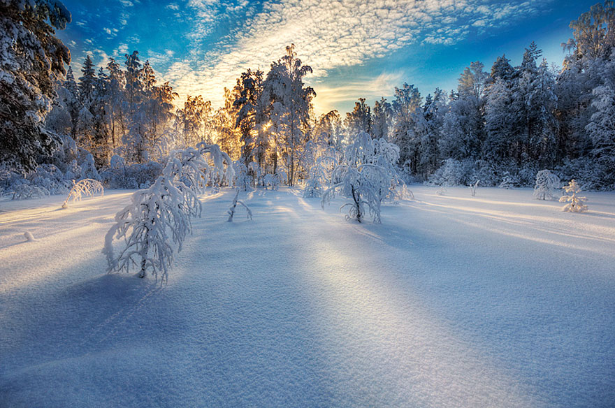 зимние пейзажи фото красивые