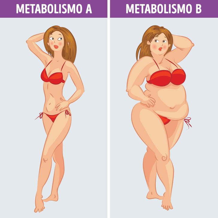 Ускорить обмен веществ – что такое метаболическая диета