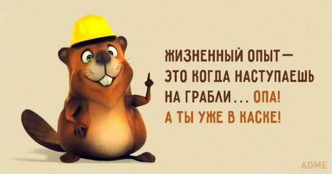 https://files5.adme.ru/files/news/part_98/989560/18635310-4-650-a542d8629a-1484581018.jpg