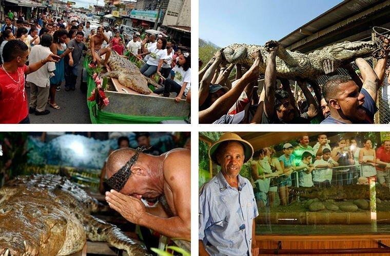 Почо прожил больше 50 лет. Я решил забальзамировать его и открыть музей в его честь — как напоминание того, что человек может стать крокодилу другом животные, жизнь, крокодил, люди, почо, рыбак, чито