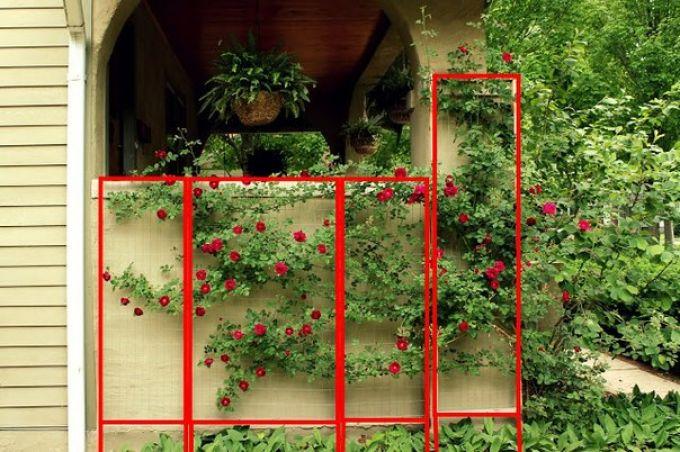 Опора для вьющихся растений своими руками фото
