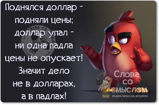 http://mtdata.ru/u30/photo9322/20685373271-0/original.jpg#20685373271