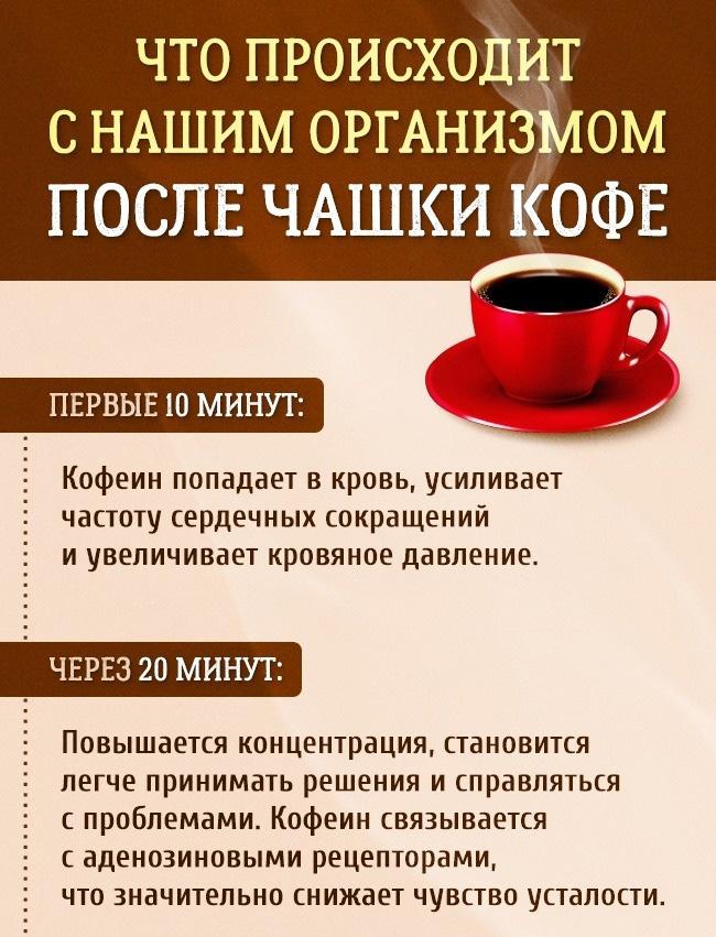 Что происходит с нашим организмом после чашки кофе