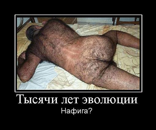 таксы порно