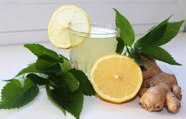 Чайный напиток с имбирем, лимоном и мятой