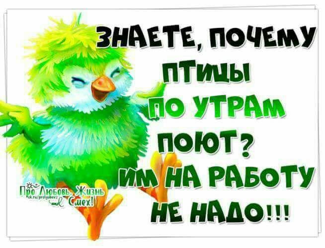 Блог Павла Аксенова. Анекдоты от Пафнутия. Фото Dmitroza - Depositphotos