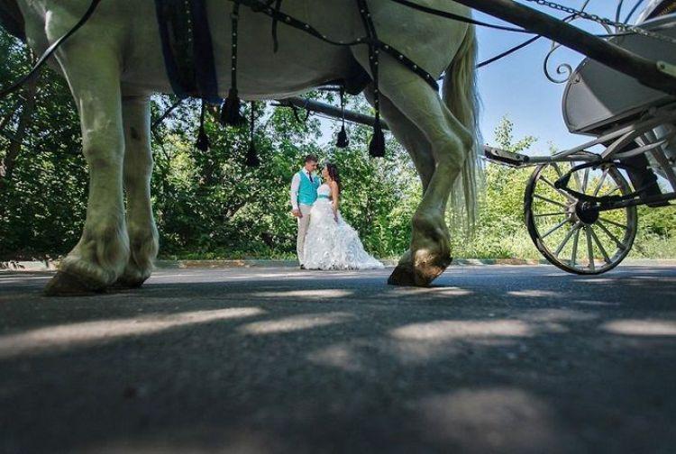 40 фото неудачного свадебного креатива или пособие о том, как не надо снимать свадьбу