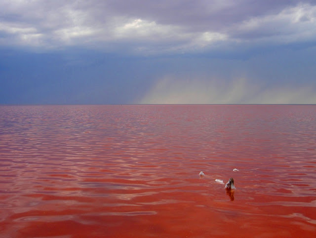 Озеро Эльтон, Волгоградская область — и Мёртвое море нам не нужно!