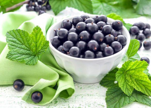 Черная смородина — витамины с собственной дачи круглый год!