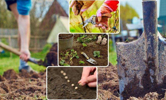 : Дачные работы весной