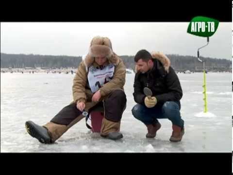 """Песня""""Зимняя рыбалка"""". """"Народная рыбалка"""".Денис Майборода на Агро-ТВ."""