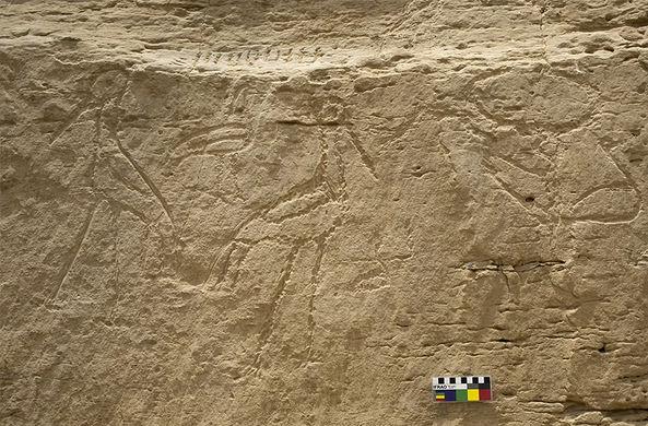 «Рекламный щит» возрастом 5000 лет с посланием о космосе найден в Египте