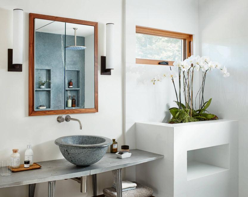 Живые растения для ванной