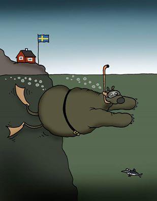 Шведы снова обнаружили подводное НЛО и на этом основании прекратили учения флота