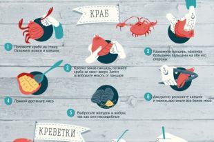 Лобстеры, крабы, улитки: как нужно есть морепродукты? Инфографика