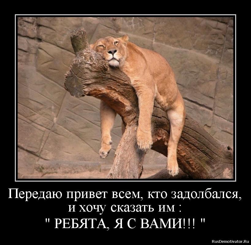 http://mtdata.ru/u30/photoA79E/20619246416-0/original.png