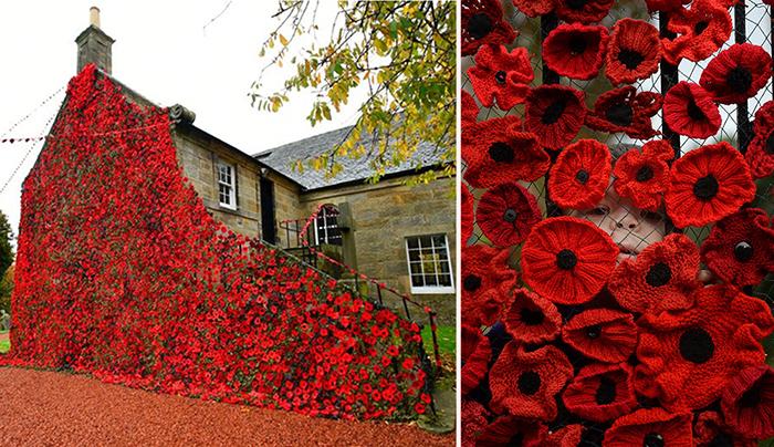 В шотландской деревне связали ковер из маков в честь 100-летия окончания Первой мировой войны