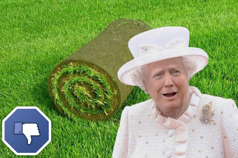 Дональд Трамп испоганил газон королевы Елизаветы II