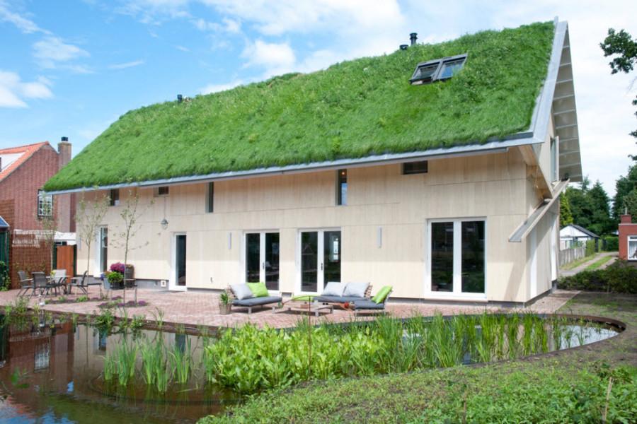 """Оригинальный частный дом с """"зеленой крышей"""""""