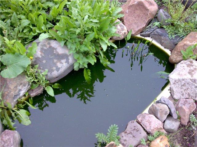 Декоративный водоём из старой ванны