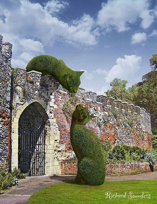 Коты в английских парках: Почему огромные стриженные кусты вызвали настоящий ажиотаж в Интернете
