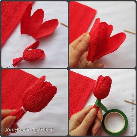Тюльпан из гофрированной бумаги мастер класс