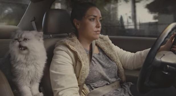 Потрясающее видео для подержанного авто увеличило цену с $499 до $20 тыс.