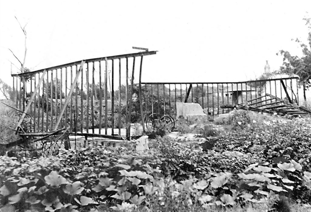 spbzoo05 Как ленинградский зоопарк пережил блокаду