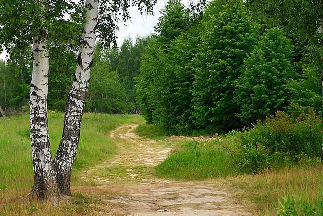 http://mtdata.ru/u30/photoACC6/20890385959-0/original.jpeg