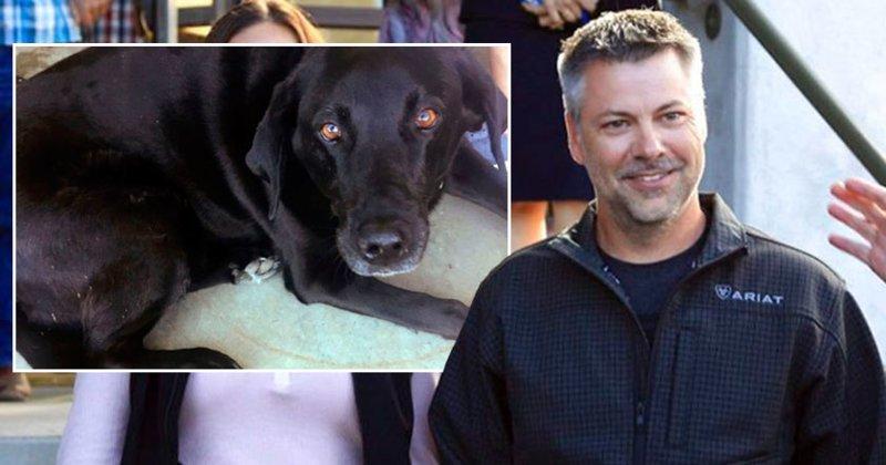 Собака спасла обвиненного в …