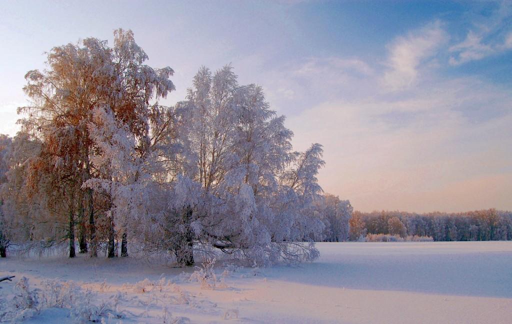 Зима (этюд)