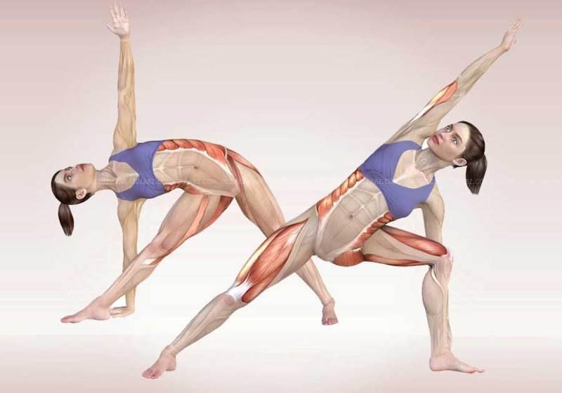 Страх живет в ногах: зеркальное отражение в эмоций в нашем теле.