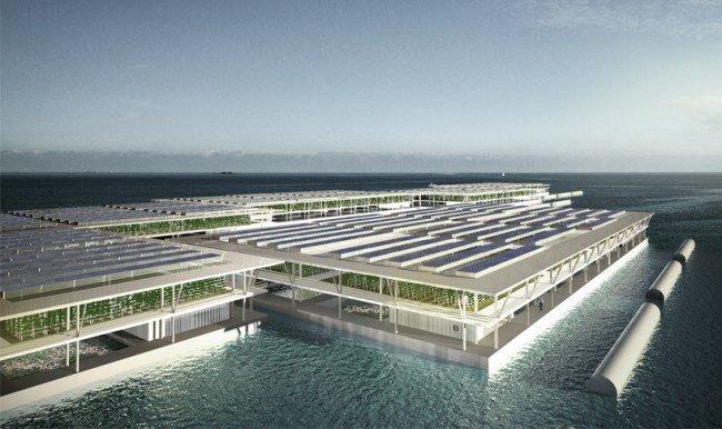 Плавучие фермы спасут человечество от голода голод, море, овощи, технологии будущего, ферма
