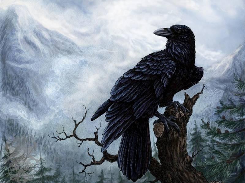 Ворон. Сказки, рассказанные ночью